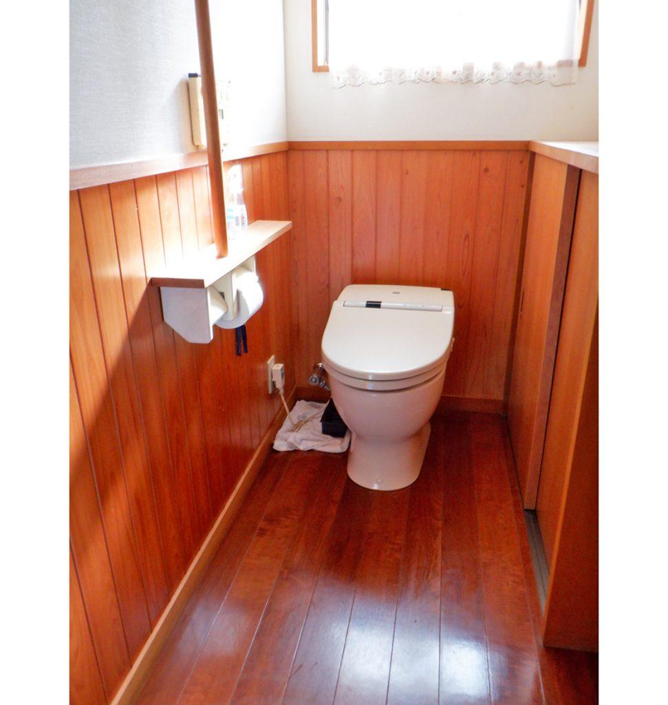 まだ綺麗なトイレです。